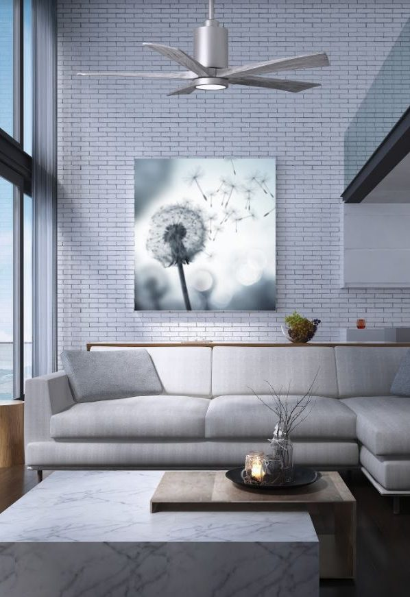 ventilateur plafond atlas fan patricia avec lumière
